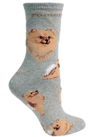 Red Pomeranian Novelty Socks SaltyPaws.com