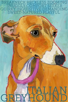 Italian Greyhound Brown and White Artistic Fridge Magnet SaltyPaws.com