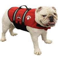 Life Jacket Red Neoprene SaltyPaws.com