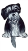 Havanese Wagging Tail Clock www.SaltyPaws.com