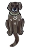 Weimaraner Wagging Tail Clock www.SaltyPaws.com