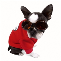 Doggles Eyewear for Pets