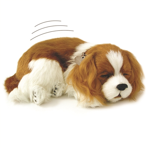 Perfect Petzzz therapy pets for Alzheimer's cavalier king charles
