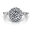 Double Angel Halo Round Brilliant Engagement Ring ½ct.