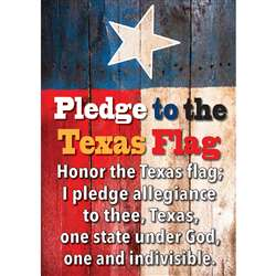 Magnetic Texas Pledge 8X11 Sheet, ASH77808