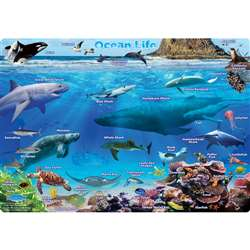 Ocean Life Postermt Pals Smart Poly Single Sided, ASH95201