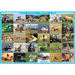 Mommy And Me Animals Postermat Pals Single Sided S, ASH95202