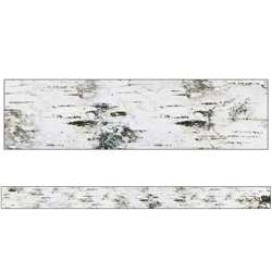 Birch Tree Straight Borders Woodland Whimsy, CD-108366