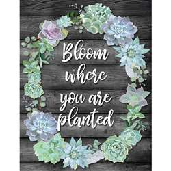 Bloom Where You Are Planted Chart Simply Stylish, CD-114259