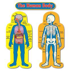 "Child-Size Human Body 2 Figures 50"" Tall Bulletin Board Set By Carson Dellosa"