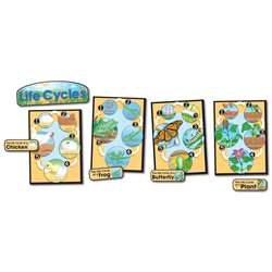 Bb Set Life Cycles Gr 1-8 Butterfly Chick/Frog/Plant By Carson Dellosa