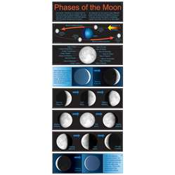 Bbs Phases Of The Moon Gr 4-8 By Carson Dellosa
