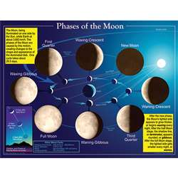 Chartlet Phases Of The Moon By Carson Dellosa