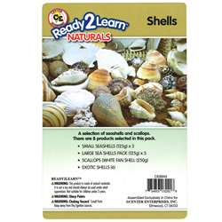 Natural Assortments: Shells, CE-6943