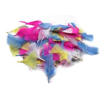 Turkey Feathers Spring Colors 14G Bag, CHL63040