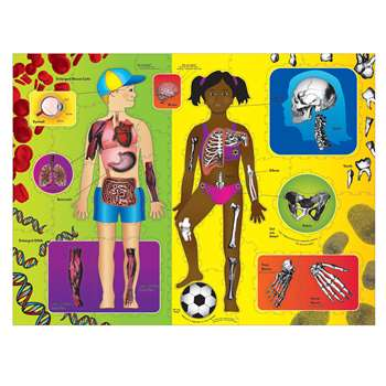 Wonderfoam Giant Our Body Activity Puzzle, CK-4413
