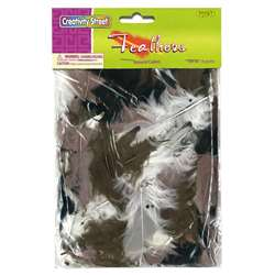 Assrt. Quill Feathers Natural Color By Chenille Kraft