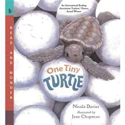 One Tiny Turtle By Candlewick