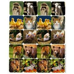 Baby Animals Real Photos Theme Stickers By Eureka