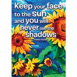 Keep Your Face To The Sun Posters 13X19, EU-837131