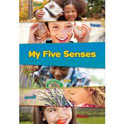 These Are My Senses Set Of All 5 Books, HE-9781484604359