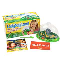 Ladybug Land By Insect Lore