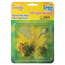 Frog Life Cycle Stages By Insect Lore