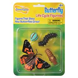 Butterfly Life Cycle Stages By Insect Lore