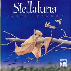 Stellaluna Big Book By Houghton Mifflin