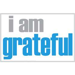 I Am Grateful Notes 20 Pack, ISM0030N