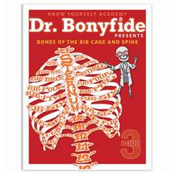 Bones Of Rib Cage And Spine Dr Bonyfide Activity W, KWYDRBBK3EA1