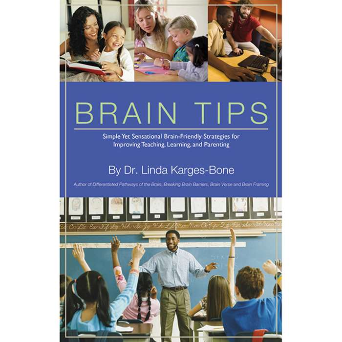 Brain Tips, LEP901096LE