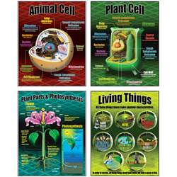 Life Science Teaching Poster Set By Mcdonald Publishing