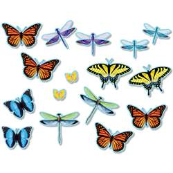 Butterflies Dragonflies Accents Bulletin Board Set, NST3213