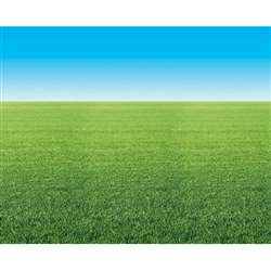 Fadeless 48X12 Summer Horizon 4Rls Per Carton By Pacon