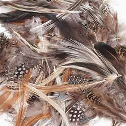 Natural Feathers Assorted Colors, PACAC4514