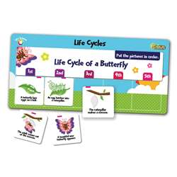 Flipchex Science Life Science Life Cycles, PC-4302