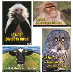 Spanish Fun Photo Posters Set 5, PSZBB5