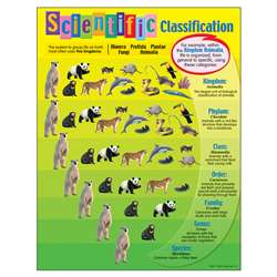 Chart Scientific Classification By Trend Enterprises