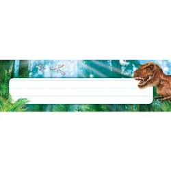 Discovering Dinosaurs Desk Toppers Name Plates, T-69239
