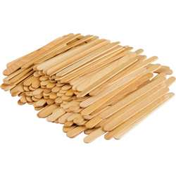 Stem Basics Craft Sticks 250 Ct, TCR20919