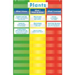 3 Column Chart Pocket Chart By Teachers Friend