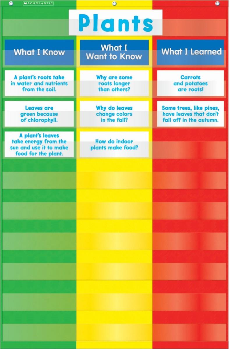 3 column chart pocket chart by teachers friend pocket charts