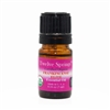 Certified Organic Frankincense Elite Essential Oil