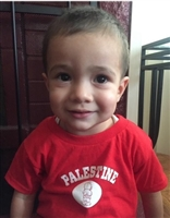 Kid's Palestine T-shirt (Toddler)