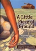 A Little Piece of Ground