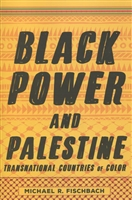 Black Power and Palestine: Transnational Countries of Color