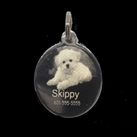 Photo Pet Tag