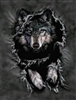 117 3D Lenticular Picture Wolf Ripped