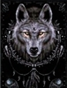 118 3D Lenticular Picture Wolf in Dream Catcher
